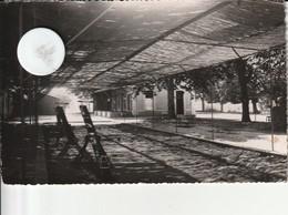 05 - Carte Postale Semi Moderne De  CERESTE Colonie De La SNCF - Autres Communes