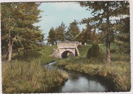 63 Fournols D'auvergne Le Pont De La Genestiere - Autres Communes