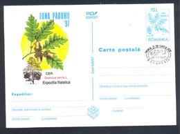 Romania 1997  Postal Stationery Card: Flora Mushroom Pilz Champignon Fungi; Trees Cer (quercus Cerris L.) - Pilze
