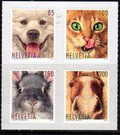 SWITZERLAND, 2019, MNH, ANIMAL FRIENDS, DOGS, CATS, HORSES, RABBITS, 4v - Cani