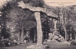 SAINTE AGNES          LES PIERRES PLANTEES.    LE SERPENT - Dolmen & Menhirs