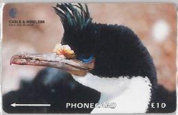 PHONE CARD -FALKLAND (E41.33.7 - Falklandeilanden