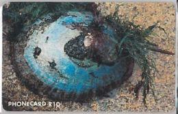 PHONE CARD -SUDAFRICA (E41.35.4 - South Africa