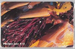 PHONE CARD -SUDAFRICA (E41.35.5 - Sudafrica
