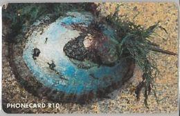 PHONE CARD -SUDAFRICA (E41.36.4 - Zuid-Afrika