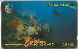 PHONE CARD -CAYMAN (E41.39.8 - Kaimaninseln (Cayman I.)