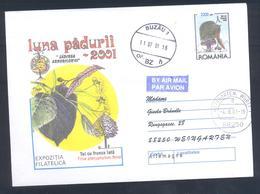 Romania 1998 Postal Stationery Cover Flora Mushroom Pilz Champignon Fungi; Tree Lime (Tilia Platyphyllos Scop) Kalk - Pilze