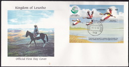Lesotho, Birds, 1993, S/Sheet On FDC - Gru & Uccelli Trampolieri