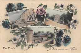 FAULX  -  De Faulx ..je Vous Envoie Ces Fleurs ..Multivues Anciennes - Autres Communes