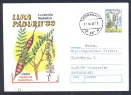 Romania 1999 Postal Stationery Cover Flora Mushroom Pilz Champignon Fungi Tree Honey Locust (Gleditsia Triacanthos) - Pilze