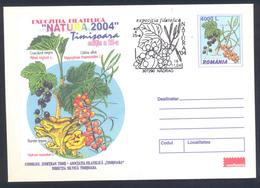 Romania 2001 Postal Stationery Cover Flora Mushroom Pilz Champignon Fungi  Sweet Tooth; Blackcurrant; Sea Buckthorn - Pilze