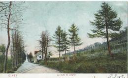 Ciney - La Route De Leignon - D.T.C. Anvers 1905 - Cin. 2 - 1909 - Ciney