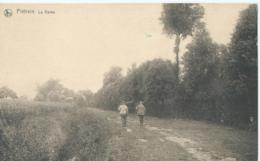 Geldenaken Piétrain - La Vallée - Photo Auguste Hoo, Gembloux - Jodoigne