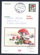 Romania 2001 Postal Stationery Card: Flora Mushroom Pilz Champignon Fungi; Red Mushrum; Birds Vogel Oiseaux; - Pilze