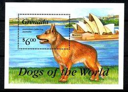 GRENADE. BF 318 De 1993. Chien D'Australie. - Honden