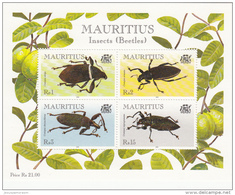 Mauricio Hb 22 - Mauricio (1968-...)
