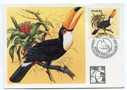 TUCANOS TUCANUÇU (RAMPHASTOS TOCO). SERIE FAUNA BRASILEIRA BRASIL 1983 TARJETA POSTAL CARD FDC - LILHU - Pájaros