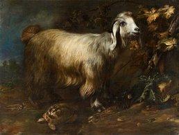 @@@ MAGNET - Paolo Porpora, A Goat, Tortoise And Snail In A Forest Landscape. - Publicitaires