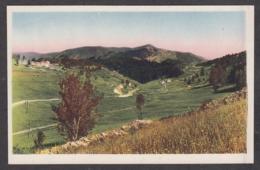 99440/ ALPES-MARITIMES, Route Des Launes à Valberg Et Le Bois De Chaye - Non Classés