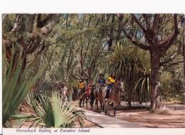 CARTOLINA DALLE BAHAMAS - PARADISE ISLAND, NASSAU - TIMBRO E FRANCOBOLLO - 1981 - Bahamas