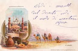 Post Card : Cairo  Le Caire  (Egypt ) Litho Tombeaux Des Mameluks  Le Désert - Le Caire