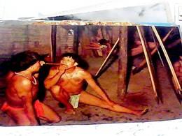VENEZUELA INDIOS GUAICA SOPLANDOSE EL ESTIMULANTE YOPO ALTO ORINOCO S1979 HB8487 - Venezuela