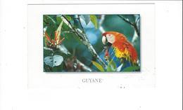 GUYANE  FRANCAISE   LOT DE 5 CARTES  ****    A SAISIR  **** - Guyane