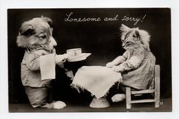 - CPA CHIEN Et CHAT - Lonesome And Sorry ! - - Chiens