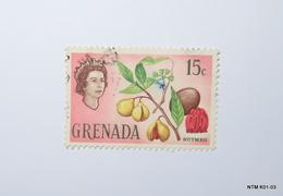 GRENADA 1966. 15c. Nnutmeg. SG239. Used. - Grenade (...-1974)