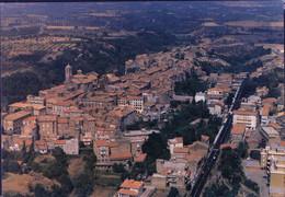 """PIA - Cartolina Illustrata - Panorama Di Vetralla (Vt) Con Annullo Filatelico Per Lo """"Sposalizio Dell' Albero"""" - Italia"""