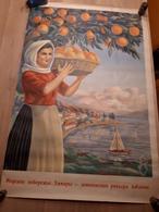 OUDE AFFICHE 1950-1965, ALBANIE, 100x66cm - Affiches