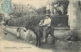 GARGILESSE - Type Du Pays, Un âne. - Anes