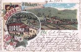 Deutschland -  Gruss Aus SULZHAYN  - Landhaus Louis Reinecke - Litho 1902 - Allemagne