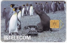 CZECH REP. C-640 Chip Telecom - Animal, Penguin, Communication, Historic Telephone - Used - Czech Republic