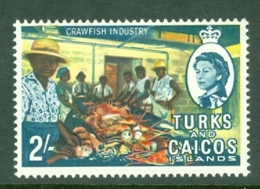 Turks & Caicos Is: 1967   QE II Pictorials   SG283   2/-   MH - Turks And Caicos
