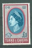 Turks & Caicos Is: 1967   QE II Pictorials   SG287   £1   MH - Turks & Caicos (I. Turques Et Caïques)