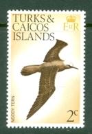 Turks & Caicos Is: 1973   Birds   SG383    2c    MNH - Turks & Caicos (I. Turques Et Caïques)