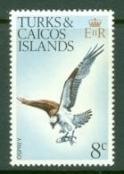 Turks & Caicos Is: 1973   Birds   SG388    8c    MNH - Turks And Caicos