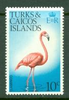 Turks & Caicos Is: 1973   Birds   SG389    10c    MNH - Turks And Caicos