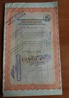Napoli Compagnia Napolitana Illuminazione E Gas Titolo Azionario Da 5 Azioni 1961 - Elettricità & Gas