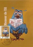 D36435 CARTE MAXIMUM CARD TRIPLE 2018 NETHERLANDS - CHOUETTE OWL EULE - DUTCH TELEVISION 1968-2018 CP ORIGINAL - Eulenvögel