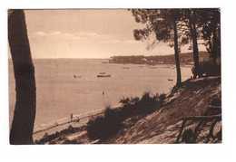 33 Piquey Vue Des Jacquets Bassin D' Arcachon - Frankrijk