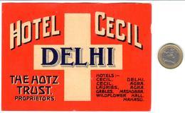 ETIQUETA DE HOTEL  - HOTEL CECIL  - DELHI  -INDIA - Etiquetas De Hotel