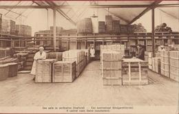 Sint-Gillis-bij-Dendermonde - S.A. Flandria - Ficellerie Bindgarenfabriek Kontroolzaal Factory Fabriek Cotton Mill - Dendermonde