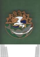 INSIGNE  MARINE  INDOCHINE  :  AILETTE      -- DRAGO  PARIS NICE 43 RUE OLIVIER METRA  DEPOSE . - Marine