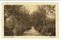 CPA - Carte Postale -Belgique -Sint-Niklaas-Waas- -Kersenlaan -VM1330 - Sint-Niklaas
