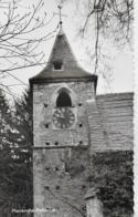 AK 0184  Pfarrkirche Pottschach - Foto Tüchy Um 1960 - Neunkirchen