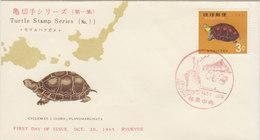 RYUKYU 1965 FDC With Tortoise.BARGAIN.!! - Ryukyu Islands