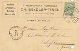 Belcele 1904 - Etab.Horticole  - Ch.Beydler-Tinel  - - Privé Kaart - Azaleas Erc... - Sint-Niklaas