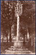 29 PLONEVEZ-DU-FAOU Croix Du XVIe Siècle à La Chapelle St Herbot - Plonevez-du-Faou